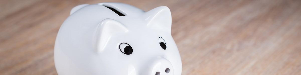 Pridi in osvoji finančno pismenost ter uredi svoje finance